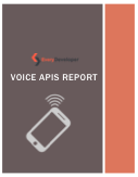 Voice APIs report
